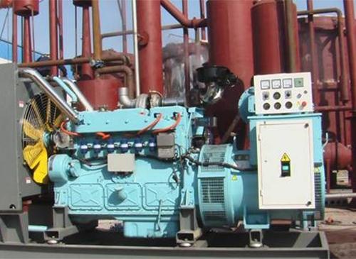 机制炭发电设备